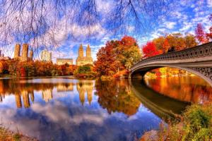 Осенний Центральный парк