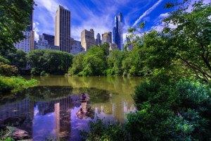Центральный парк Нью-Йорка летом