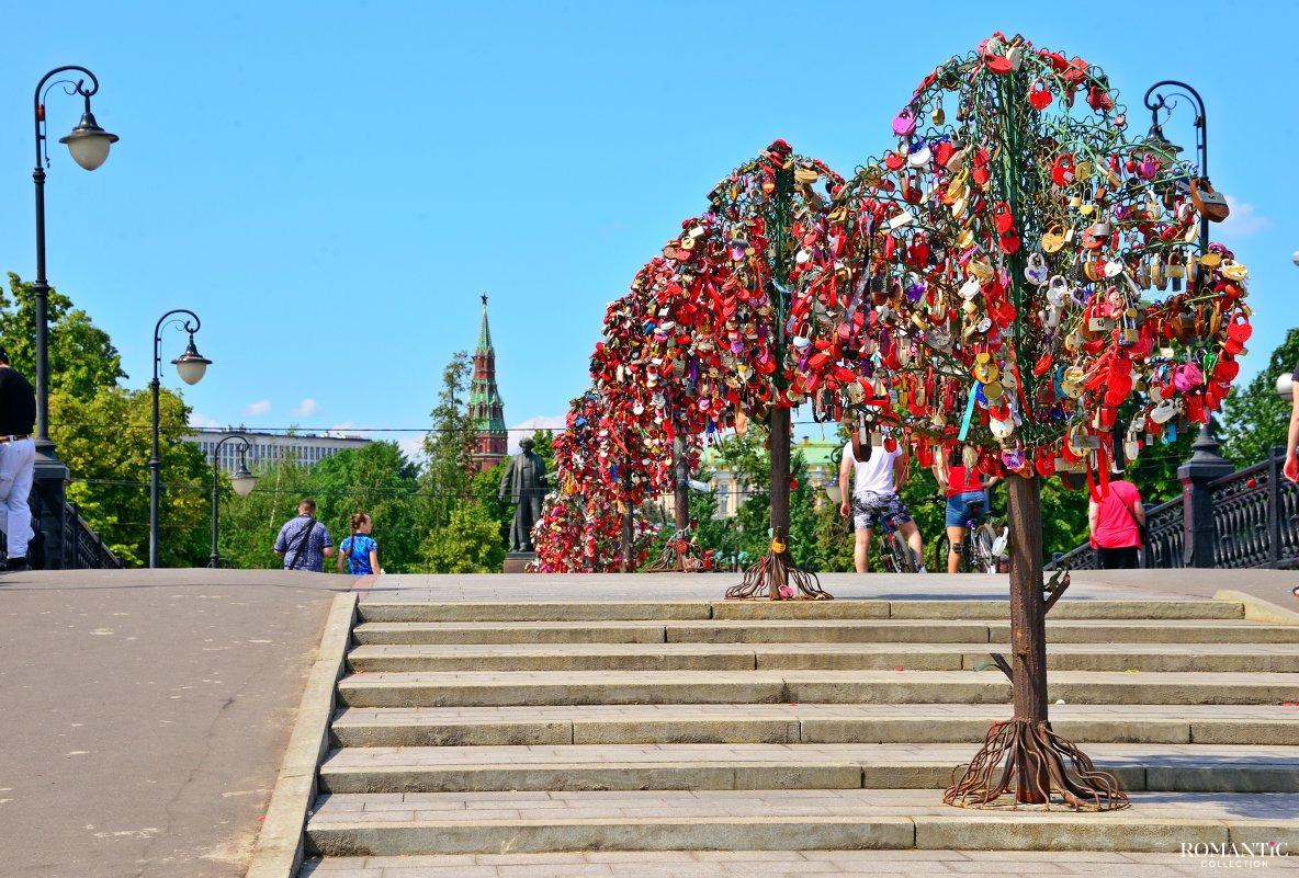 Деревья любви на Лужковом мосту