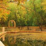 Андреевский пруд осенью
