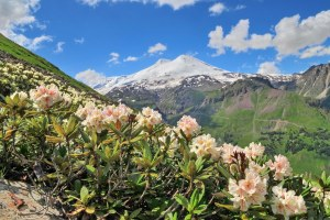Весна у подножия Эльбруса