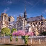 Собор Парижской Богоматери, Нотр-Дам-де-Пари