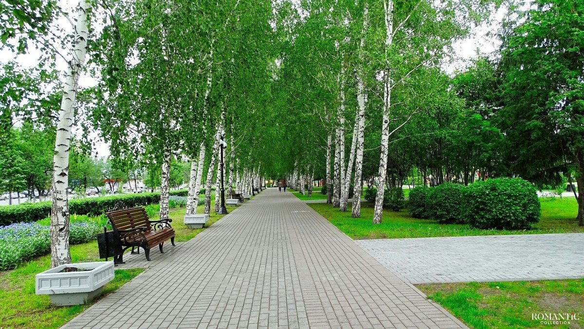 Загородный парк Самары