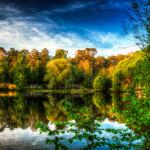Осень в Сосновом Бору