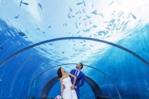 Свадьба в подводном ресторане