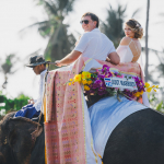 Свадьба на слонах в Таиланде