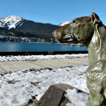 Памятник бультерьеру Пэтси Энн