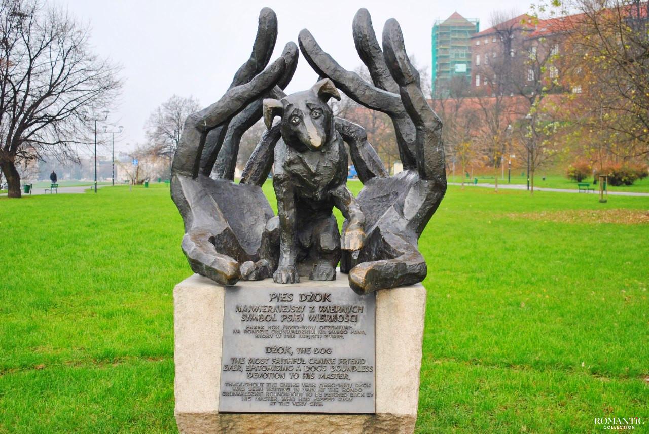 Памятник псу Джоку в Польше