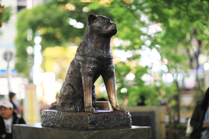 Памятник Хатико в Токио